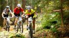 Bike Maraton 2014 już za nami - ...